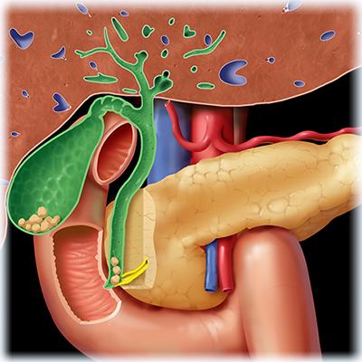 Массаж для позвоночника при остеохондрозе